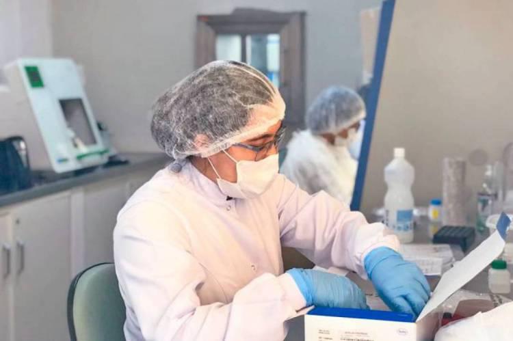 O Hemoce realizar cerca de 100 diagnósticos por dia