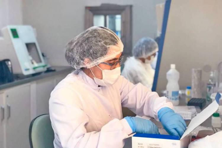 O Hemoce realizar cerca de 100 diagnósticos por dia (Foto: Divulgação)