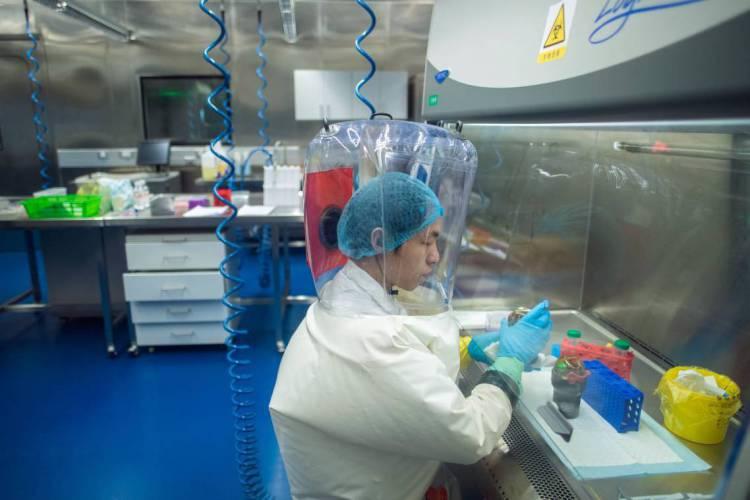 Foto de fevereiro de 2017 mostra o trabalho em laboratório de Wuhan, onde há o Centro de Cultivo de Vírus  (Foto: JOHANNES EISELE / AFP)