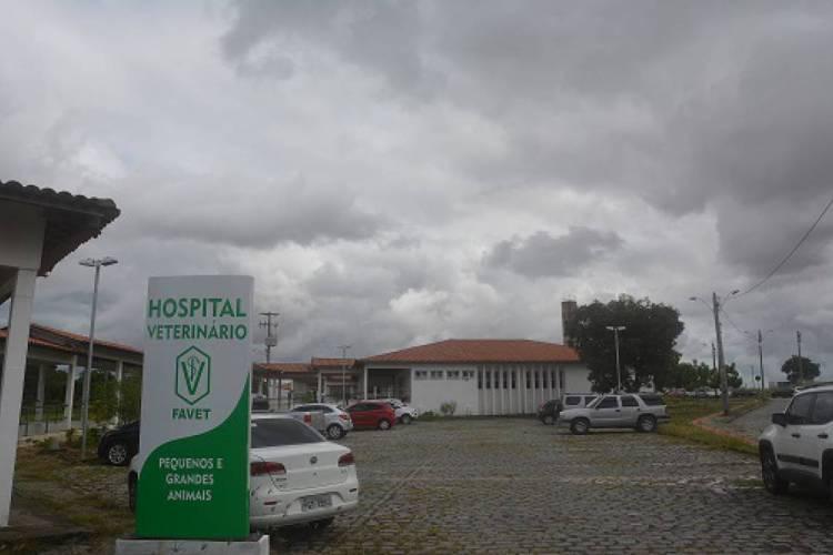 Hospital Veterinário da Uece, em Fortaleza, reabrirá para atendimentos de urgência e emergência nesta sexta-feira, 1°. (Foto: Divulgação)