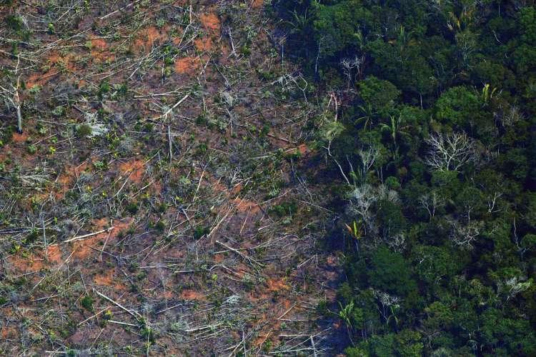 O desmatamento na Amazônia brasileira registrou um registro semestral de 3.070 km2 entre janeiro e junho de 2020 (Foto: CARL DE SOUZA / AFP)