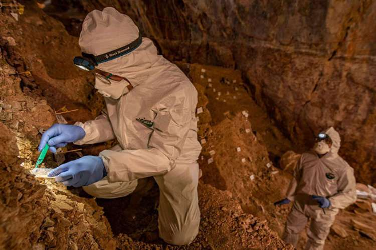 Os resultados vêm após oito anos de análises da Caverna Chiquihuite, no México. (Foto: Reprodução/Devlin Gandy)