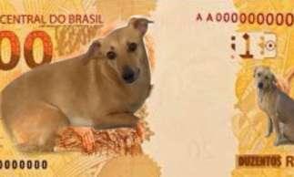 A web repercutiu o anúncio da nova cédula brasileira