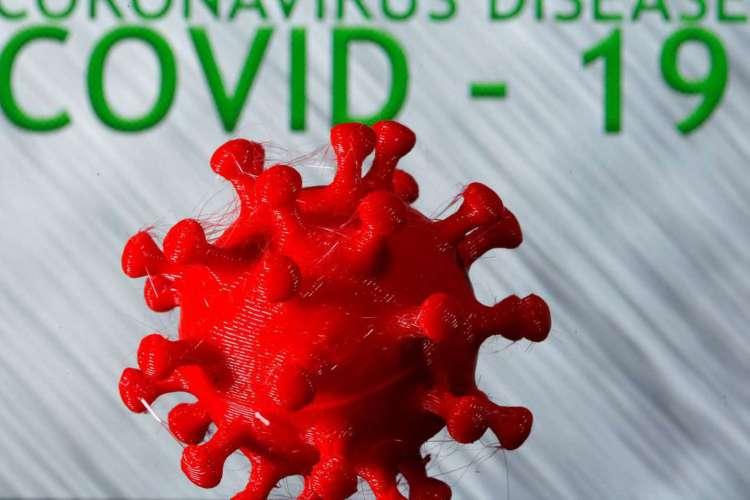 Pesquisa quer voluntários para saber relação entre genética e covid-19 (Foto: )