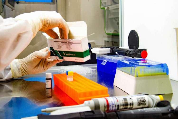 Covid-19: Fiocruz amplia capacidade nacional de testagem (Foto: Itamar Crispim/Fiocruz)
