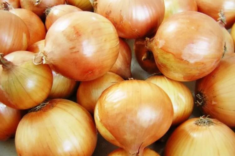 Com alta de 33,9% cebola foi a grande vilã da inflação na RMF em janeiro  (Foto: Divulgação/Ceasa)