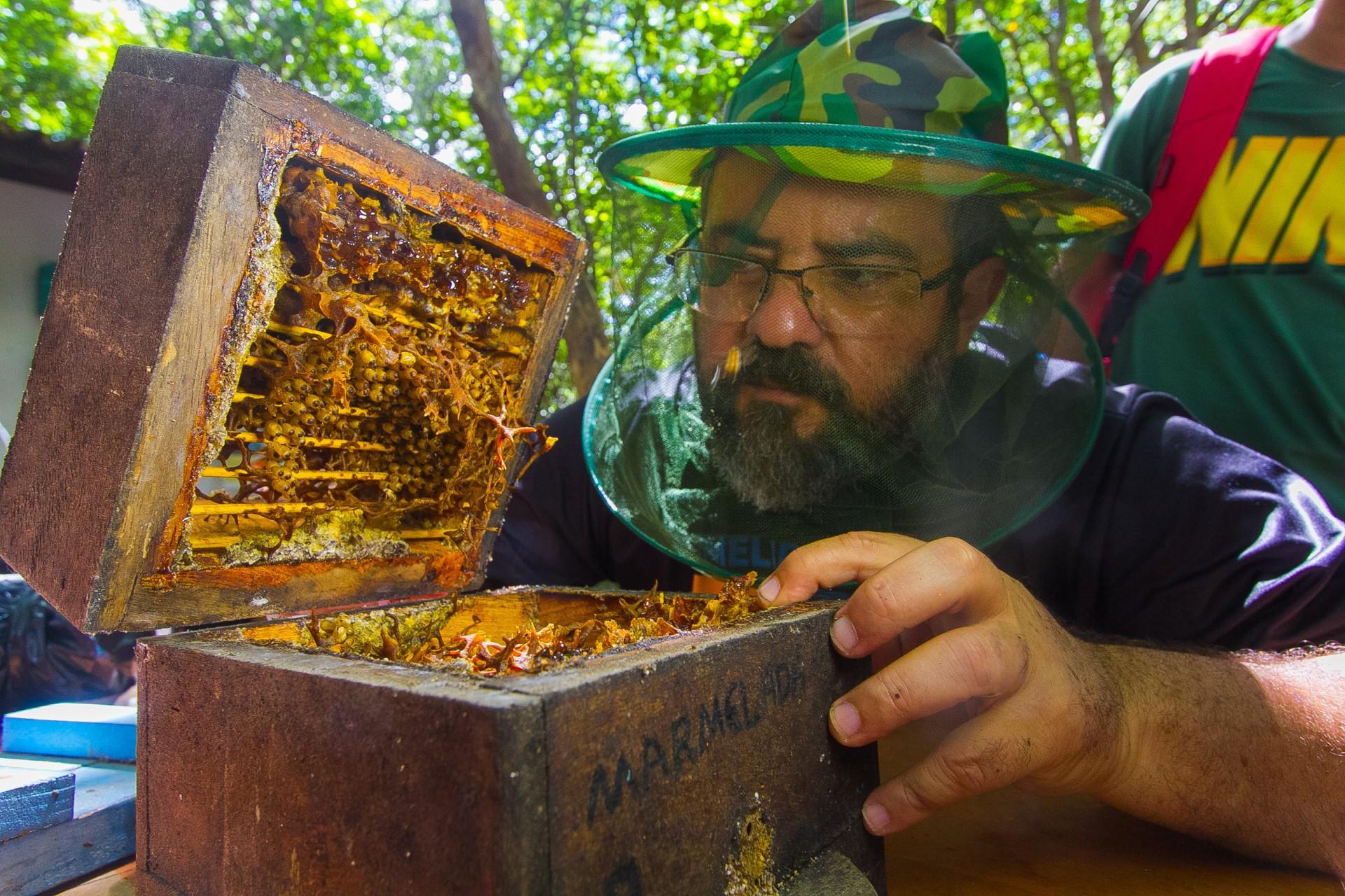 Joaquim Saldanha de Carvalho, criador de abelhas