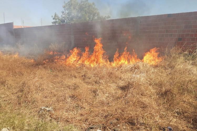 Foco de incêndio em Iguatu, na localidade de Fomento, na tarde desta quarta-feira, 2 (Foto: Divulgação/Corpo de Bombeiros Iguatu)