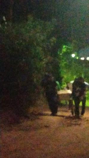 Estrada que dá acesso a cemitério para vítimas da Covid-19 em Areal, RJ, é de difícil acesso  (Foto: Arquivo pessoal)