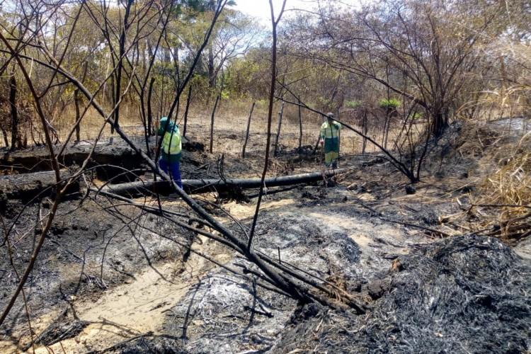 Incêndio em rodovia atingiu adutora (Foto: Reprodução)