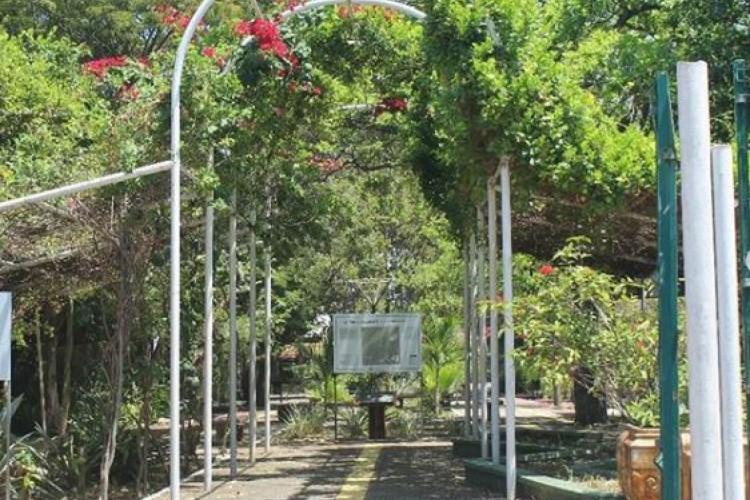 Parque Estadual Botânico foi criado em 1996, mas inauguração oficial só aconteceu em 1998.  (Foto: Reprodução/Instagram)