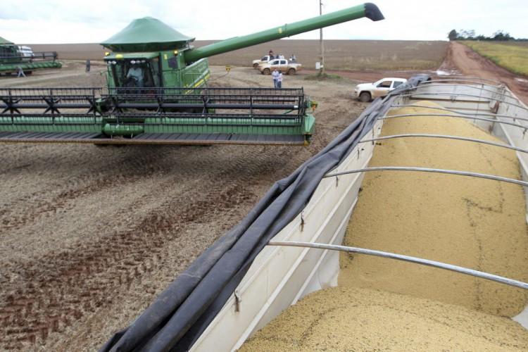 Caminhão carregado com soja após colheita em Primavera do Leste (MT) .29/01/2013.REUTERS/Paulo Whitaker (Foto: REUTERS/Paulo Whitaker)