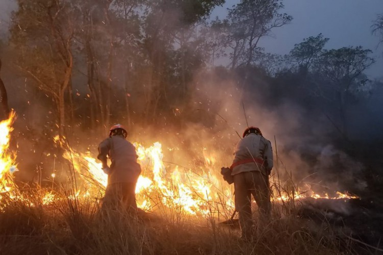 O incêndio já atingiu três reservas indígenas, e queimou mais de 200 mil hectares de área de vegetação (Foto: João Paulo Gonçalves/Corpo de Bombeiros - MT)