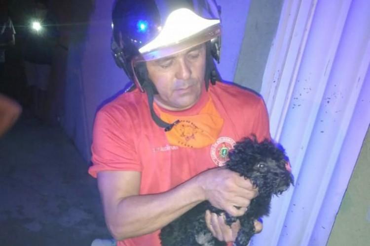 Operação começou por volta das 19h20 da sexta, 11 (Foto: Divulgação/Corpo de Bombeiros)