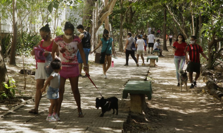 Pessoas com cachorros em trilha do Parque do Cocó na manhã do último domingo