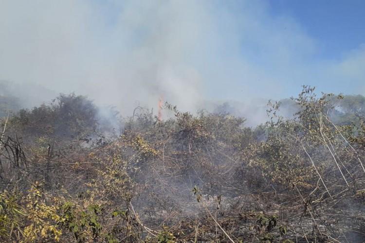 Governo reconhece situação de emergência em Mato Grosso do Sul (Foto: )