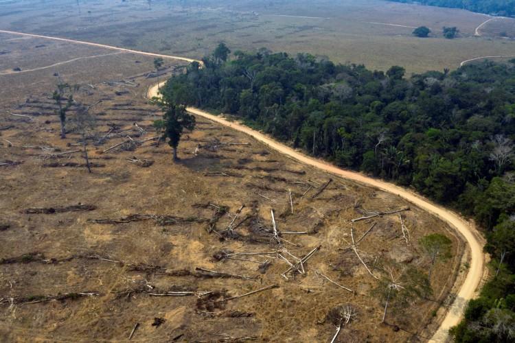 Amazonia em 24 de agosto de 2019 mostra áreas queimadas da floresta amazônica, próximo a Porto Velho, estado de Rondônia, Brasil.  (Foto CARLOS FABAL / AFP) (Foto: CARLOS FABAL / AFP)