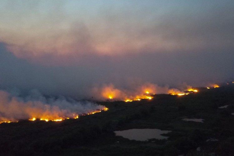 Incendios florestais entre Miranda e Corumbá BR 262 e MS 184 (Foto: Chico-Ribeiro/Governo Mato Grosso do Sul)