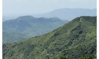 Área de Proteção Ambiental (APA) da Serra de Baturité completa nesta sexta-feira, 18, 30 anos de sua criação