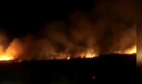 Área incendiada na noite de sexta-feira fica na altura do km 19 da BR-116