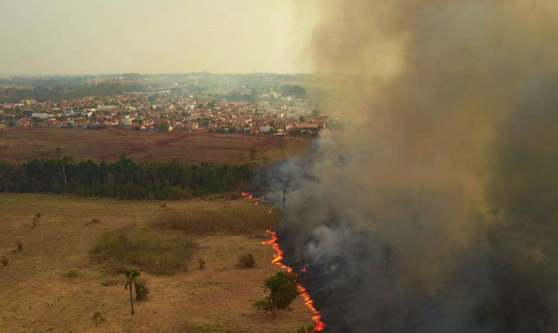 Mato Gosso MT 13 09 2020-Incêndio no Pantanal A Delegacia de Meio Ambiente (Dema) apura quem são os possíveis responsáveis pelos focos de incêndio, que deram início a grandes queimadas no Pantanal. As cinco perícias realizadas pelo Centro Integrado Multiagências de Coordenação Operacional (Ciman-MT) apontaram ação humana como causa da origem das queimadas na região foto Mayke Toscano/Secom-MT (Foto: 12.09 2020/Mayke Toscano/Secom-MT)