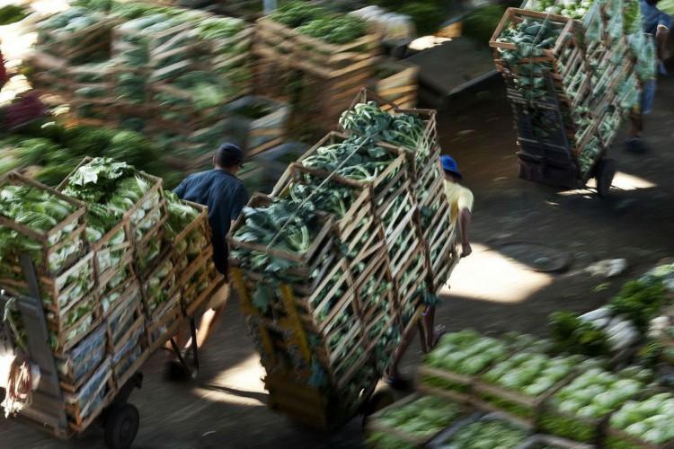 Trabalhadores da Companhia de Entrepostos e Armazéns Gerais de São Paulo (CEAGESP), uma das principais empresas estatais brasileiras de abastecimento (Foto: Marcelo Camargo/Agência Brasil)