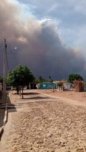 Ipueiras registra incêndio florestal de grandes proporções; Fogo ameaça comunidade