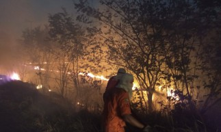 Incêndio atinge vegetação próximo à BR-116 em Horizonte