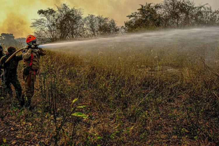 Operação Pantanal 2, combate ao incêndio na região (Foto: Mayke Toscano/Secom-MT)