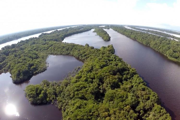 Anavilhanas: Segundo maior arquipélago de águas fluviais do mundo (Foto: TVBrasil/Sigmar Gonçalves)