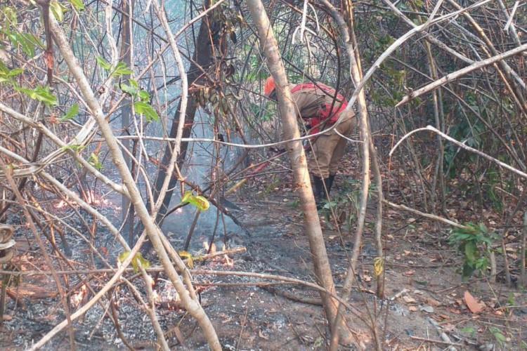 Incêndio na Chapada dos Veadeiros é controlado (Foto: )