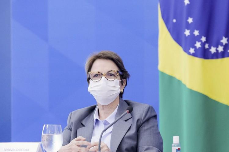 A ministra da Agricultura, Tereza Cristina, durante coletiva de imprensa. (Foto: Romério Cunha/VPR)