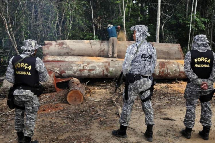 Governo prorroga uso da Força Nacional na Amazônia (Foto: )