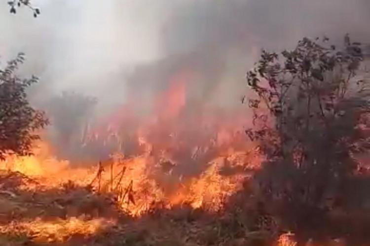 Bombeiros do município de Sobral foram acionados para atender três grandes ocorrências de incêndios em vegetação. Uma delas na área residencial de Vassouras, no distrito de Taperuaba (Foto: Reprodução/Corpo de Bombeiros)
