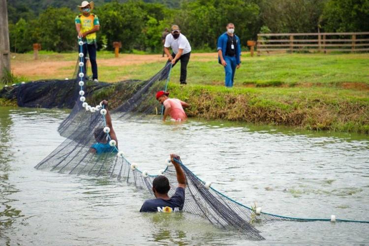 Hamilton Mourão, visita, o Projeto Integrado de Colonização (PIC) Bela Vista, em Manaus (Foto: Bruno Batista/ VPR)
