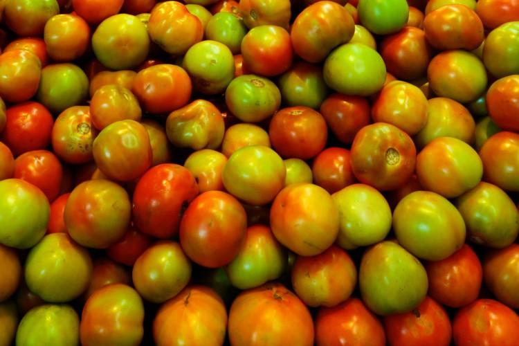 Tomate foi produto que apresentou maior redução de preço em fevereiro, com queda de 15,17% (Foto: Bárbara Moira)