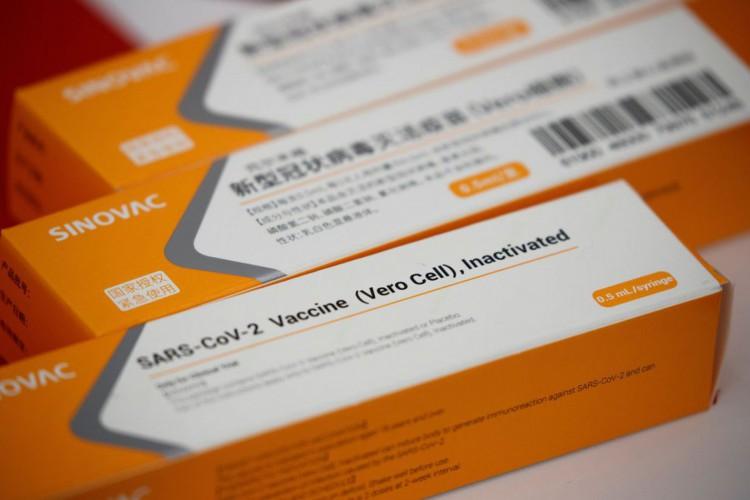 Primeiro lote da CoronaVac com 120 mil doses chega ao Brasil (Foto: )