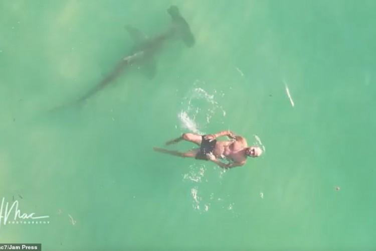 Quando viu o drone, o homem apontou o polegar para a câmera, enquanto o tubarão nadava ao lado dele (Foto: Reprodução / Instagram)
