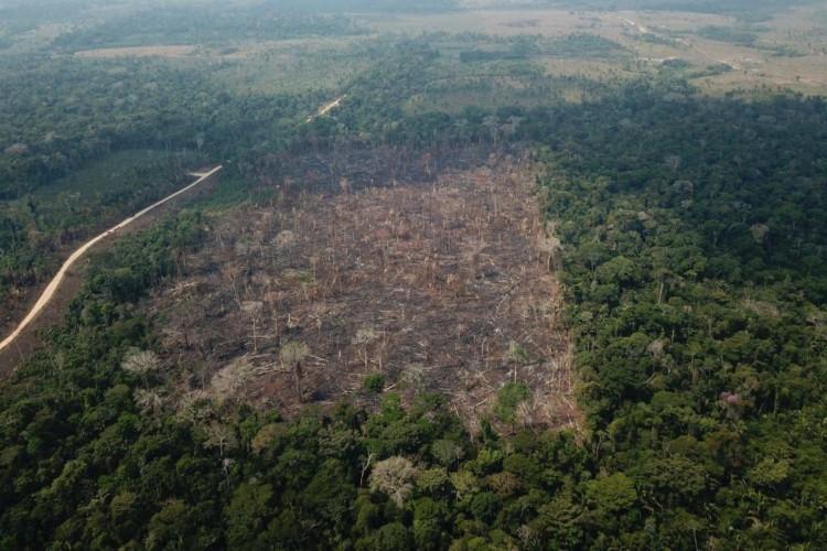 Operação de Garantia da Lei e da Ordem Verde Brasil sob a Coordenação da 17ª Brigada de Infantaria de Selva e com a participação de Órgãos Estaduais e Federais,  para combate a incêndios em vegetação e repressão a delitos ambientais (Foto: Op VERDE BRASIL/17)
