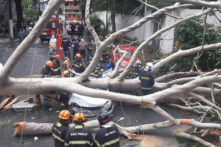 Família ficou presa nas ferragens (Foto: Divulgação/Corpo de Bombeiros)