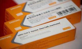 São Paulo recebe 600 litros a granel da vacina CoronaVac