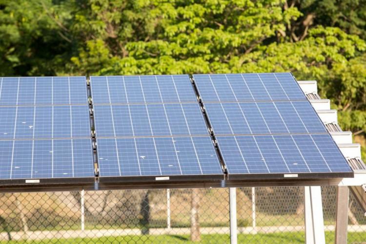 Energias renováveis (Foto: Divulgação)