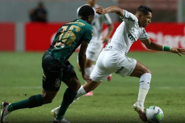 Palmeiras bateu América-MG e garantiu vaga na final da Copa do Brasil (Foto: Cesar Greco/Ag. Palmeiras/Divulgação)