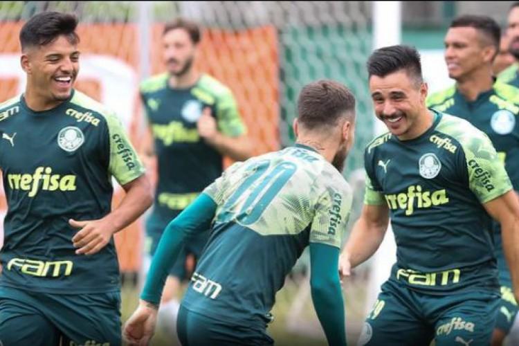 Sport X Palmeiras Pelo Brasileir U00e3o Onde Assistir Ao Vivo