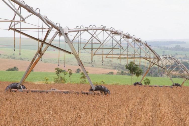 Balança comercial do agronegócio soma US$ 100,81 bilhões em 2020 (Foto: Tony Oliveira)