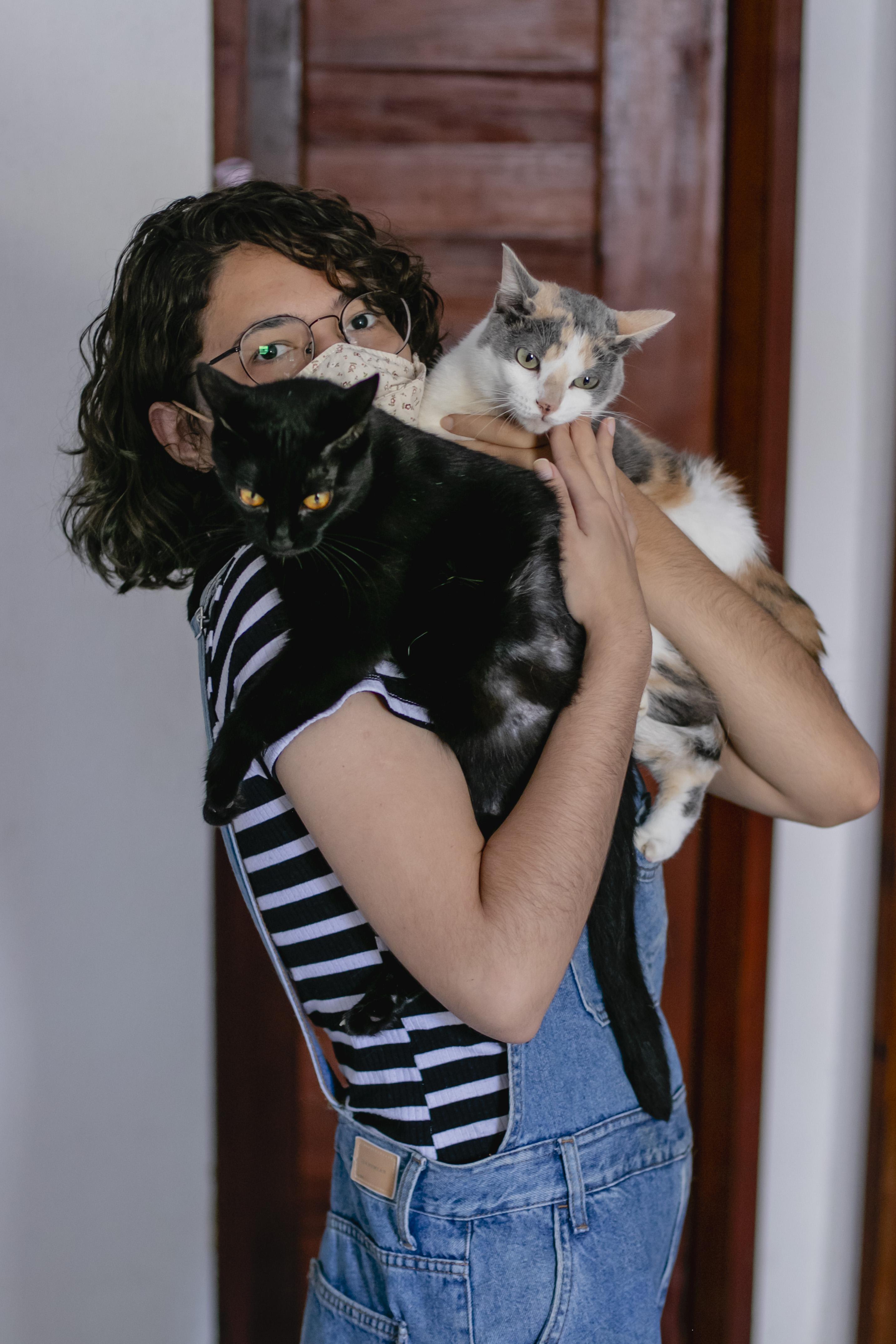 Ama pets? Entenda mais sobre consciência animal