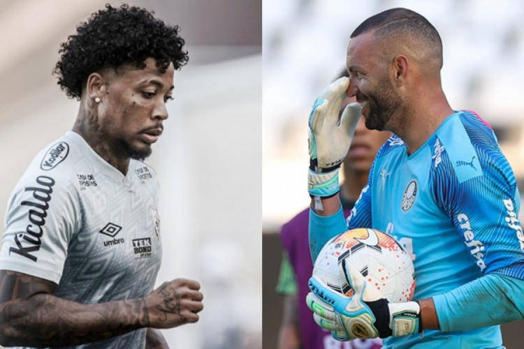 Marinho, do Santos e Weverton, do Palmeiras, são destaques individuais dos finalistas da Libertadores (Foto: Ivan Storti / Santos FC e Cesar Greco / SE Palmeiras)