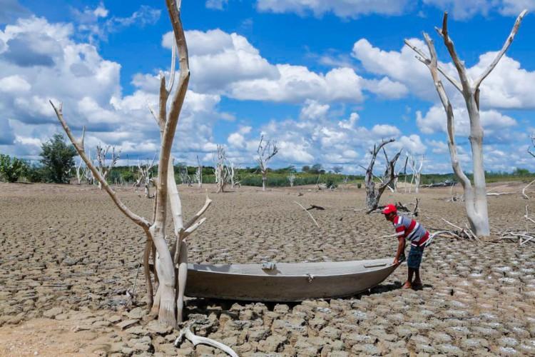 Os municípios cearenses de Acopiara e Deputado Irapuan Pinheiro estão em situação de emergência em razão da estiagem e seca (Foto: Fco Fontenele)