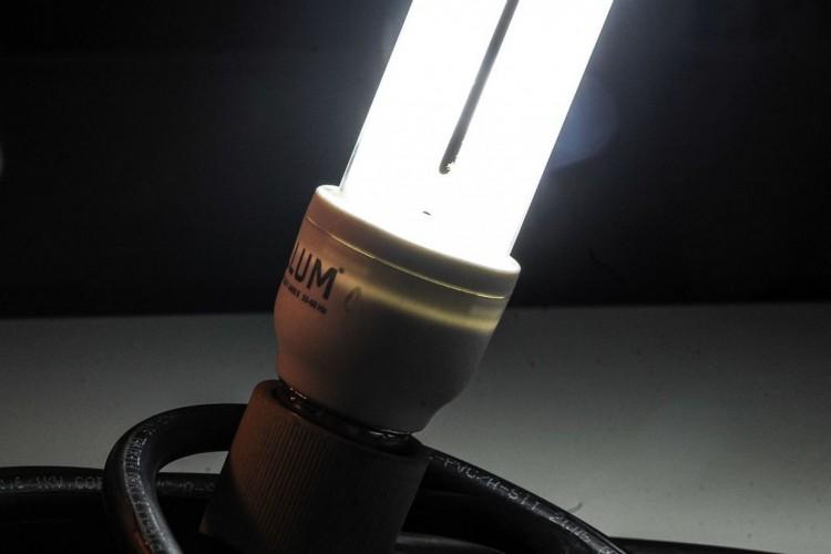 Lâmpadas incandescentes devem ser retiradas do mercado brasileiro até 2016 (Marcello Casal Jr/Agência Brasil) (Foto: Marcello Casal Jr/Agência Brasil)