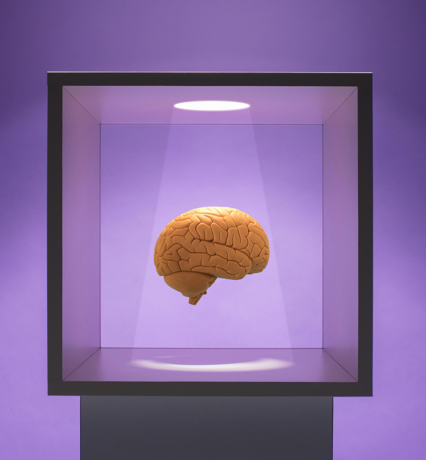Fevereiro é o mês da conscientização de fibromialgia, lúpus e Alzheimer